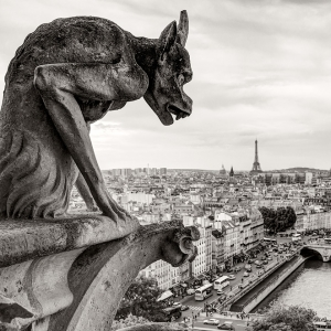 Собор Парижской Богоматери / Архитектурная фотосъемка