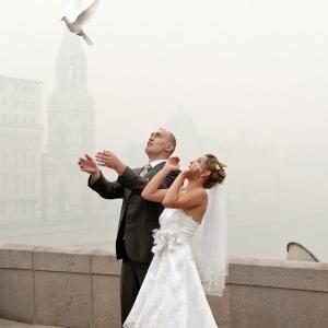 Свадьба / Репортажная фотосъемка