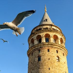Галатская башня, Стамбул / Тревел-фотография